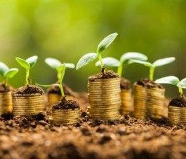 Cinco preguntas y respuestas para aumentar el crecimiento de tu empresa