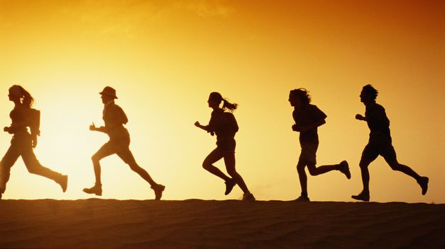 cultura saludable,madurez organizacional, rentabilidad, dieta,deporte