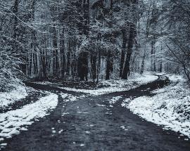 Rentabilidad o Crecimiento… ¿Tenemos que escoger?