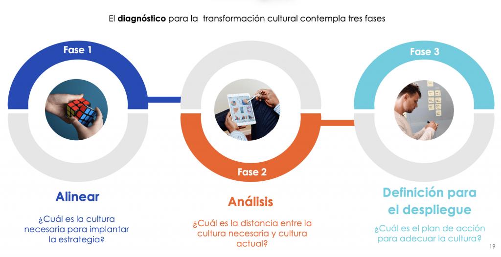 fases diagnostico transformacion cultural