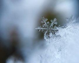 ¿Estás preparado para el invierno empresarial?