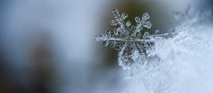 invierno empresarial